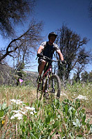images/Trails/Cuyamaca/CuyamacaMountains-29MAY06-26.jpg