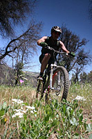 images/Trails/Cuyamaca/CuyamacaMountains-29MAY06-29.jpg