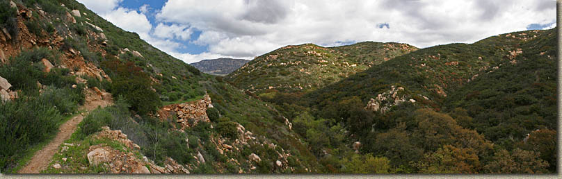 Hollenbeck Canyon