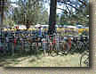 Bikes in the transition area