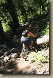 images/Trails/LakeTahoe/Tahoe-08JUL05-DHFromDriscollLake-06.jpg