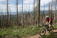 images/Trails/LakeTahoe/Tahoe-09JUL05-TRT-SpoonerToDiamondPk-15.jpg