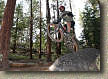 images/Trails/LakeTahoe/Tahoe-9JUL05-ChineseDH-JFR.jpg