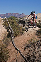 images/Trails/UT-Gooseberry2006/GooseberryMesa-8APR06-38.jpg